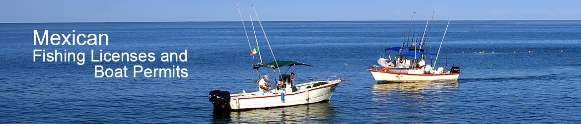 Mexican fishing licenses baja bound mexican insurance for Mexico fishing license